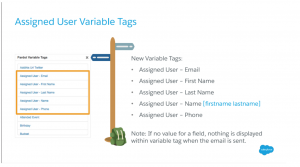Assigned user variable tags